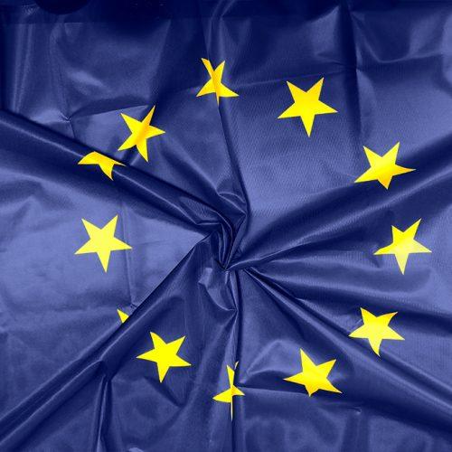 ES karogs mastam